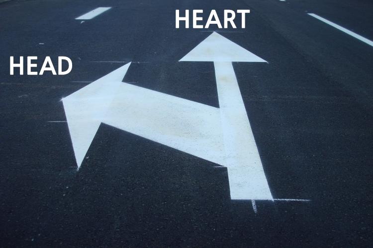 Follow Heart (WMSCOG)