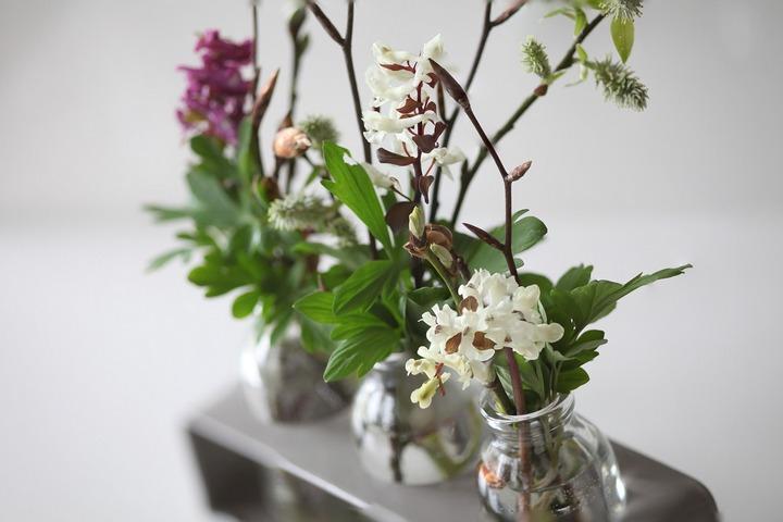 vases-720px WMSCOG